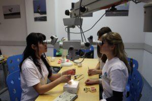 Обучение персонала клиники Дентал-Сервис